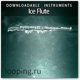 Сэмплы флейты