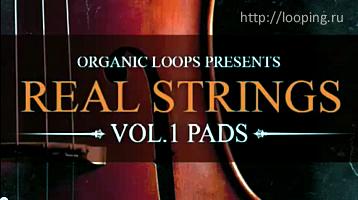 Сэмплы струнных инструментов